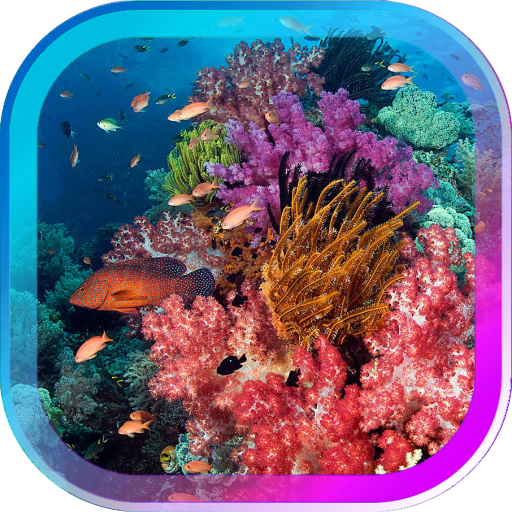 Underwater World Gallery LWP 個人化 App LOGO-硬是要APP