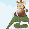 SuperbOwl 2015 Game APK