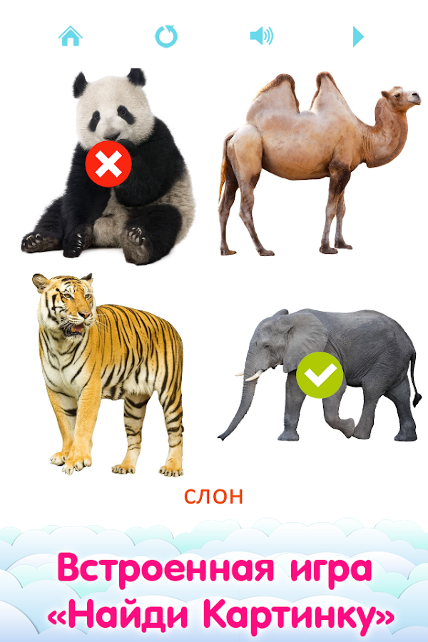 Flashcards for Kids in Russian- screenshot