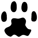 PAW Server for Android logo