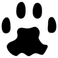 PAW Server for Android 0.96 beta