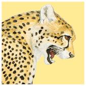 Kingdon Guide: African Mammals