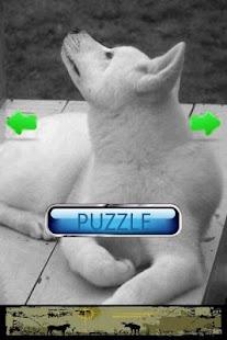 Dog Puzzle: Akita - screenshot thumbnail
