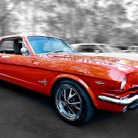 Orange Mustang by Michael Lucchese - Transportation Automobiles ( mustang, orange, muscle cars, rattle n hum, cars, australia, nikon, sydney, classic, photography,  )