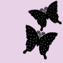 Butterfly9 Theme logo