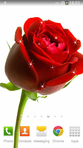 Rose Live Wallpaper v1.4