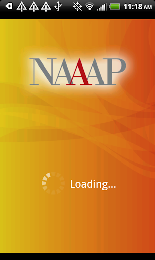 NAAAP 2013