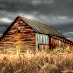 Barn oil paint combo.jpg