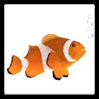 Pet Fish Tank icon