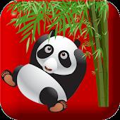 Panda Poppy Kung Fu Games Free