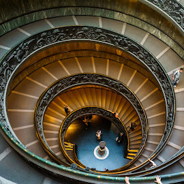 Bramante Staircase by Andrew Doyle - Buildings & Architecture Architectural Detail ( vortex, blue, beautiful, bramante staircase, gold, spiral, museum, vatican, italy )