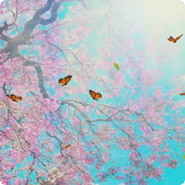 Butterfly Live Wallpaper HD 4