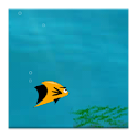 Clever Fish icon