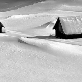 in the icy embrace by Anže Papler - Black & White Landscapes