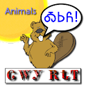 Cherokee Language Animals logo