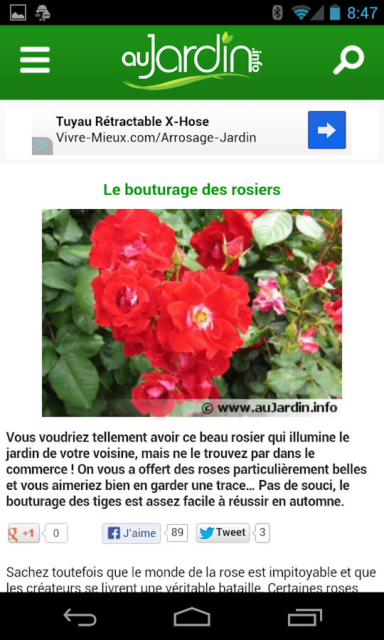 Au Jardin - screenshot