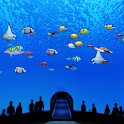 Beautiful Sea World Trial icon