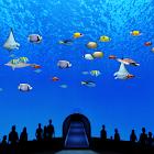 Beautiful Sea World Trial icon