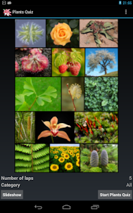 Plants Quiz - for botanists