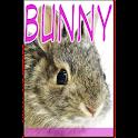 Bunny Flipmag logo