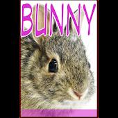 Bunny Flipmag