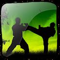 3D Taekwondo (PRO) logo