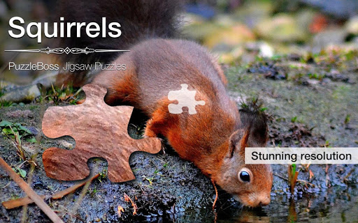 Squirrel Jigsaw Puzzles Demo