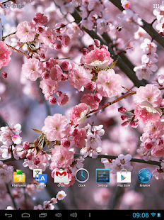 Sakura Live Wallpaper- screenshot thumbnail