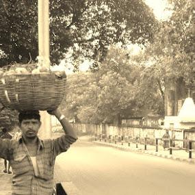 the fruitseller by Ryan Rozario - People Street & Candids ( hardworking, kolkata, fruit seller, roadside, street photography,  )
