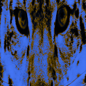 Snow Leopard LWP Pro icon