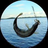 Рыбалка для всех