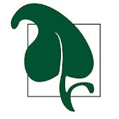 Salon Ivy