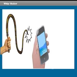 Whip Sound Shaker