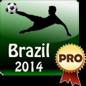 Brazil 2014 World Cup - Pro