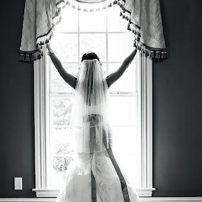 Angelic Bride by Sabrina Causey - Wedding Bride ( black and white, wedding, dress, bow, bride, sash,  )