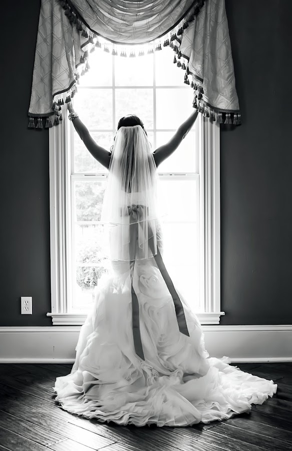 Angelic Bride by Sabrina Causey - Wedding Bride ( black and white, wedding, dress, bow, bride, sash,  )