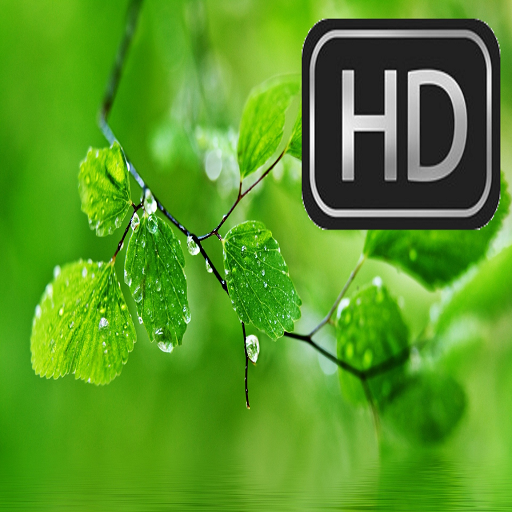 Hd Wallpapers For Huawei Apps On Google Play