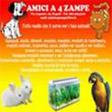 Amici a 4 Zampe icon