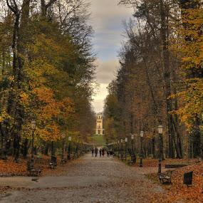 Bleak autumn in Maksimir park by Zeljko Kliska - City,  Street & Park  City Parks ( hdr, park, autumn, fall, zagreb, city,  )
