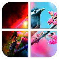 Pic Frame Effects 1.71