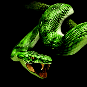 Snake Attack Live Wallpaper By Scenery