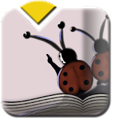 Nini the Ladybird | Kids Book