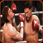 Free Boxing Techniques