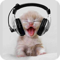 Funny Kitty Live Wallpaper icon