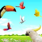 Sky Birds Live Wallpaper Free icon