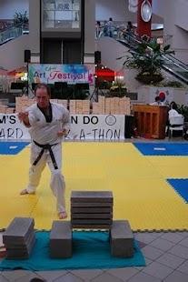 Taekwondo Forms - screenshot thumbnail