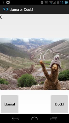 免費解謎App|Llama or Duck??|阿達玩APP