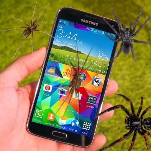 عنكبوت فوق شاشة الهاتف للتسلية